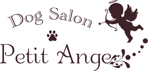 Dog Salon Petit Ange